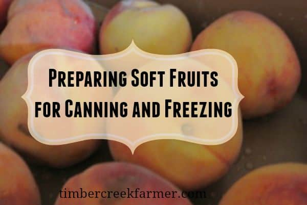 preparing soft fruit for canning