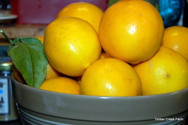 Lemons,  Lemon Extract and Lemon Crinkle Cookies