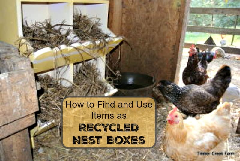 recycled nest boxes Other items can be recycled nest boxes too. Dresser draws, vegetable bins, wooden crates, and even vintage suitcases. Instead of searching just for standard farm nesting boxes, think outside the box. Here are some criteria I use to make sure an item will make a safe, sturdy nest box for my hens
