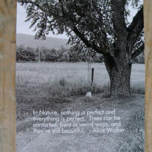 http://timbercreekfarmer.com