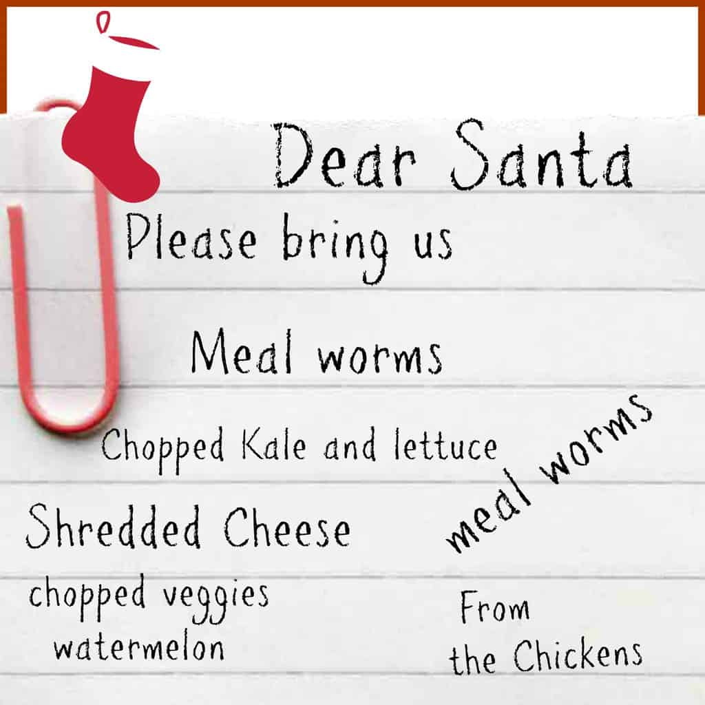 9 Foods that are not on the Chicken's Christmas List