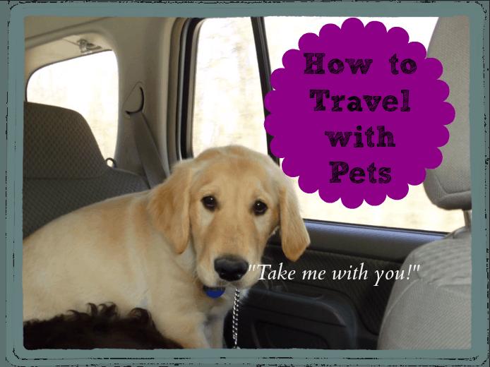 Travel with Pets  www.timbercreekfarmer.com
