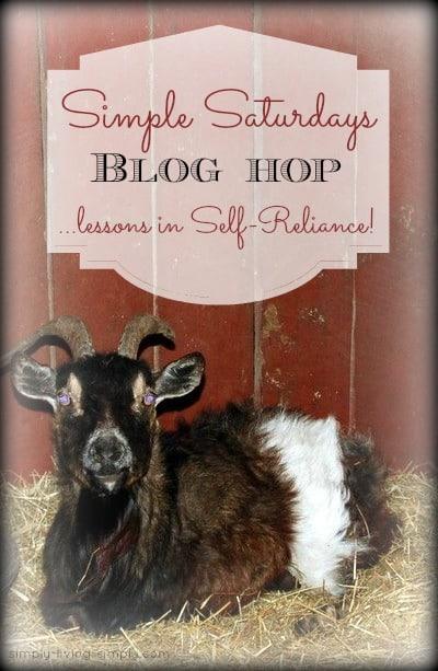 Simple Saturdays Blog Hop April 4