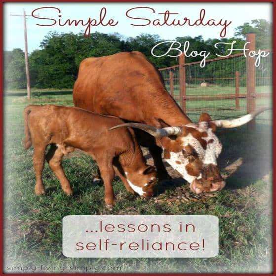 Simple Saturdays Blog Hop February 28