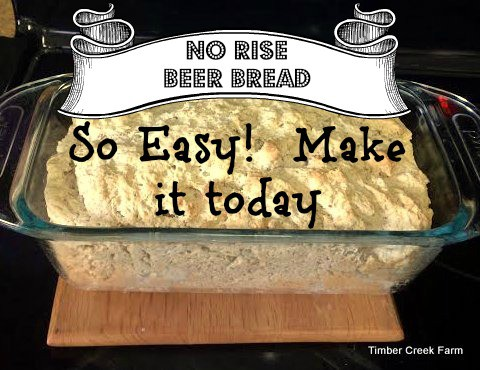 Easy No Rise Beer Bread