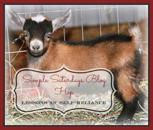 Simple Saturdays Blog Hop March 14