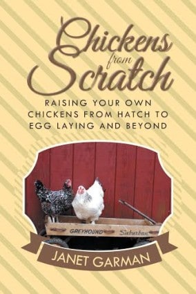 Chicken Book Cover