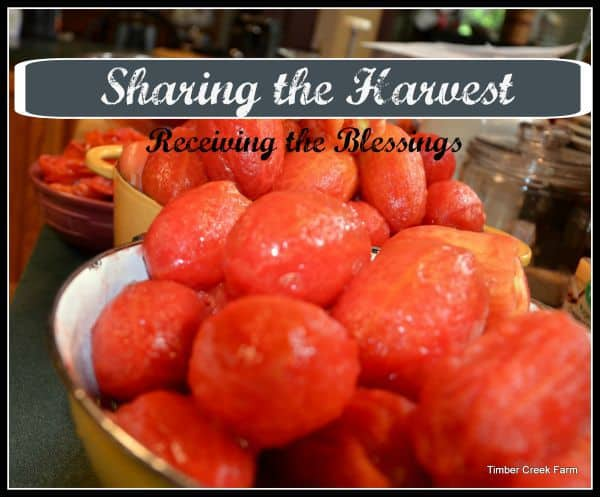Sharing the Harvest, Being the Recipient