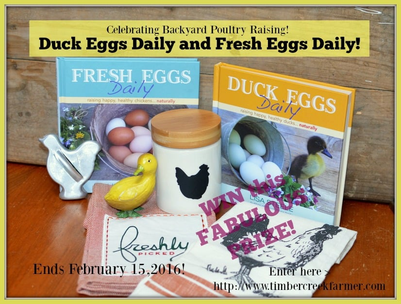 Enjoying Duck Eggs Daily and Celebrating!