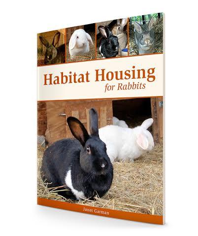 habitat housing for rabbits