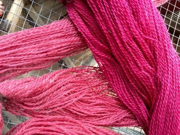 pokeberry dye