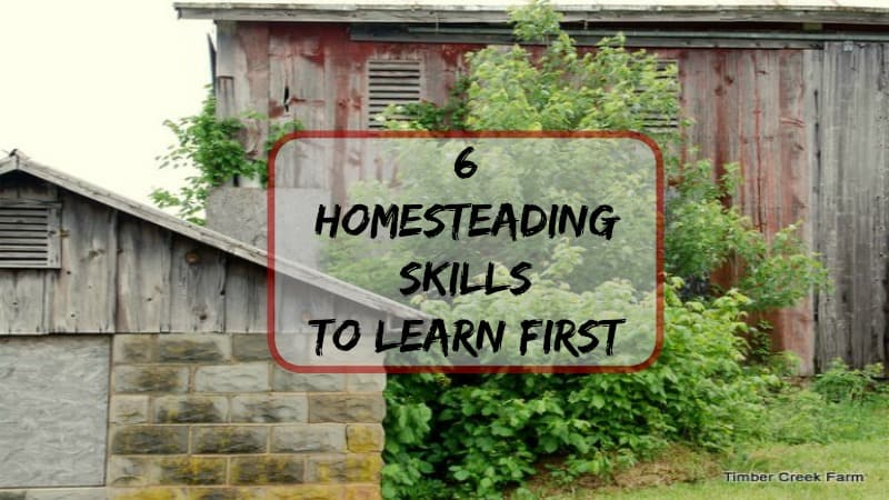 6 Homesteading Skills to Learn First
