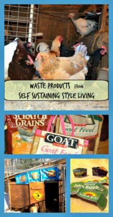 self sustaining living