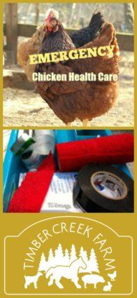 emergency chicken health care