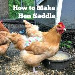 How to Make a Hen Saddle or Apron