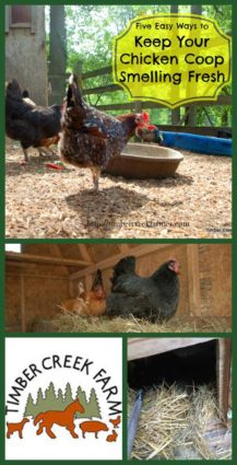 Keep Your coop smelling fresh