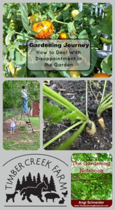 gardening journey