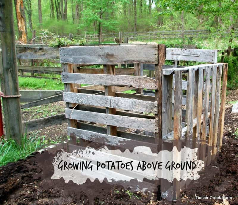 Category Diy Projects Timber Creek Farm