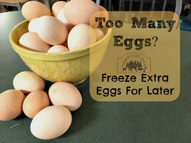 Freezing Eggs