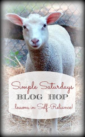 Simple Saturdays Blog Hop November 29