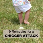 chigger attack