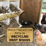 Recycled Nest Boxes - DIY Makeover