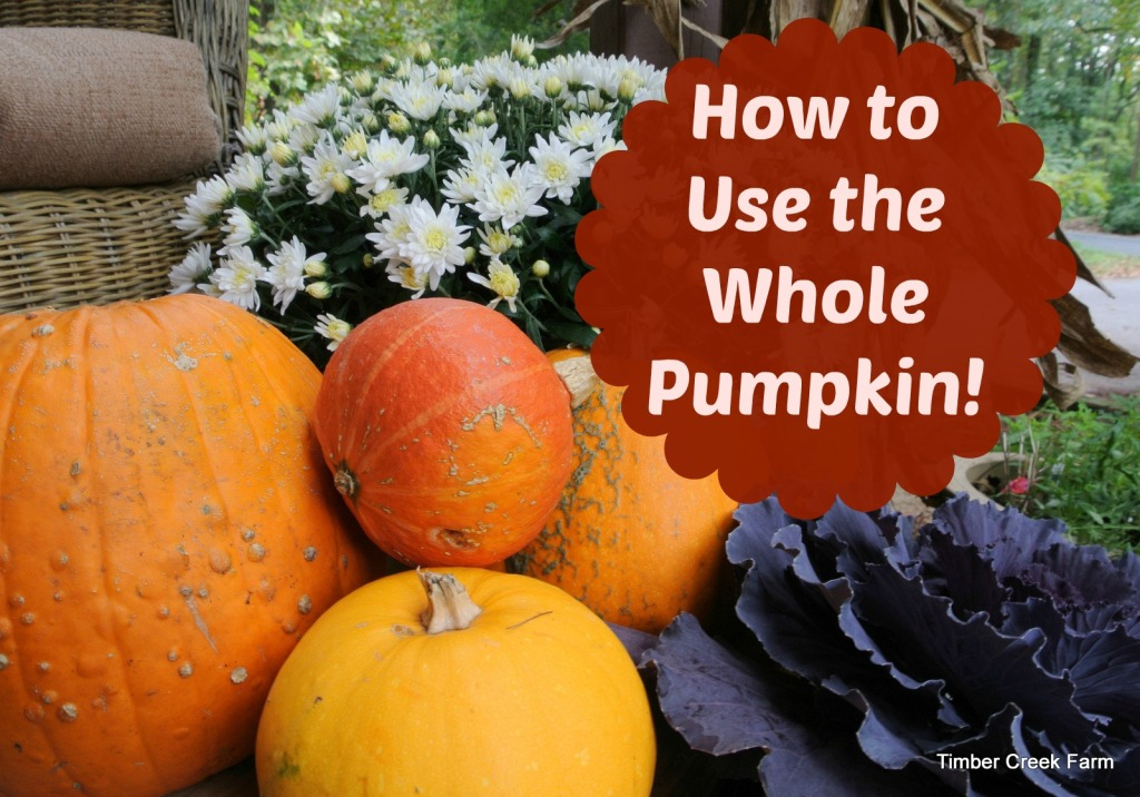 How to Use the Whole Pumpkin timbercreekfarmer.com