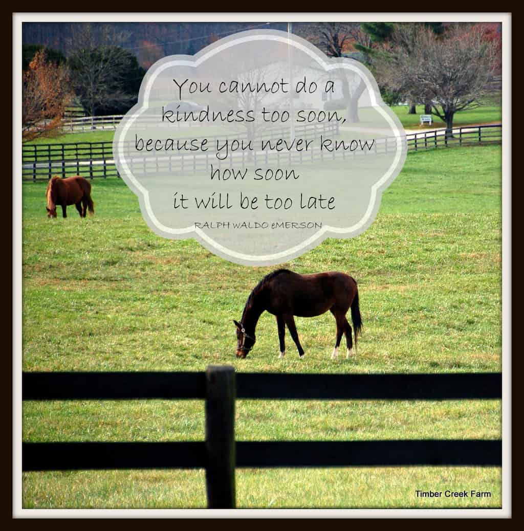 Farm Quotes Quotes Archives  Timber Creek Farm