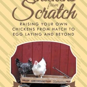Chickens from Scratch celebration