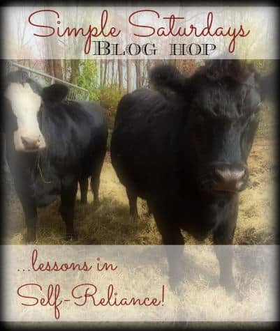 Simple Saturdays Blog Hop January 10