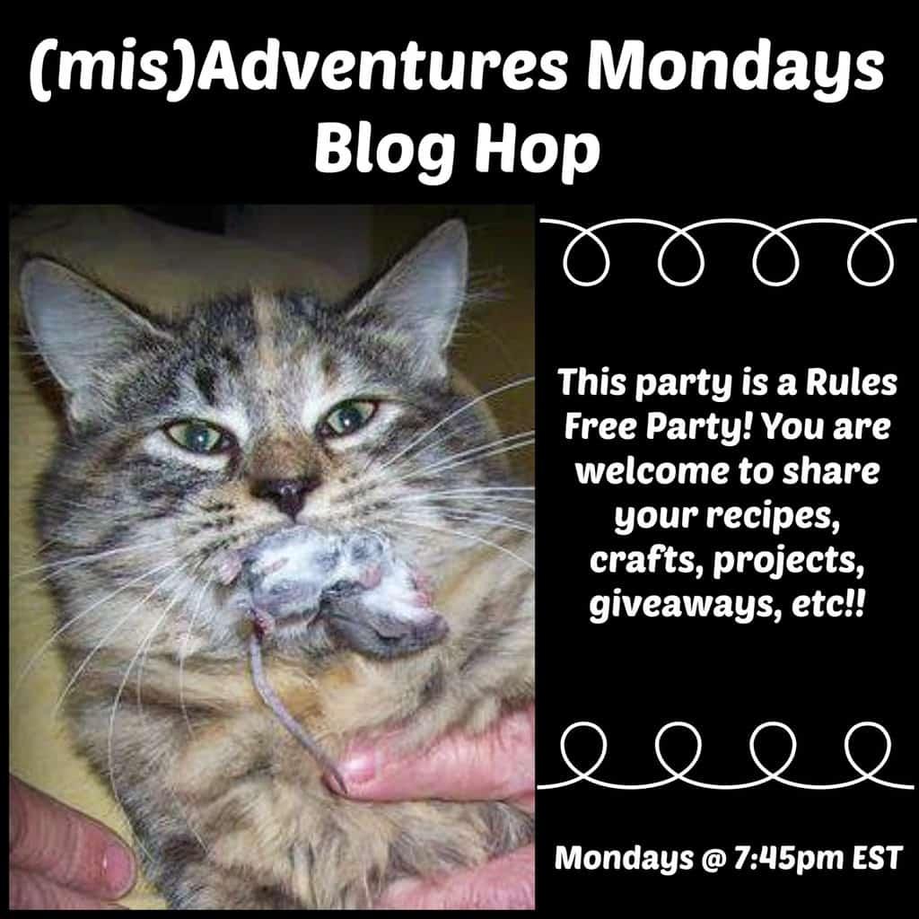 MisAdventures Mondays Blog Hop