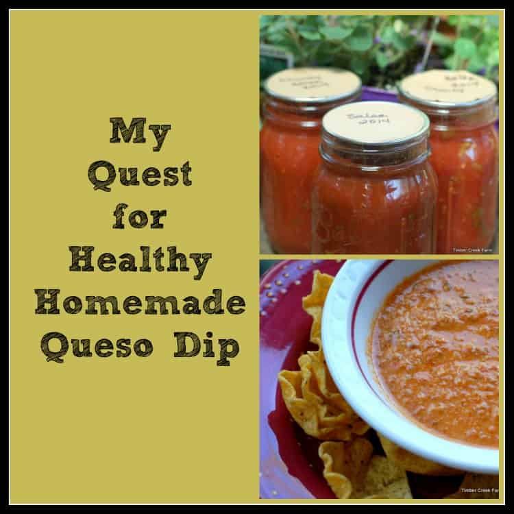 Healthy Homemade Queso Dip