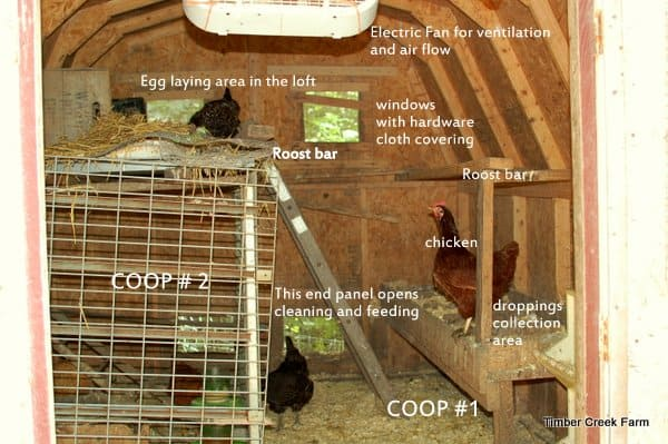 chicken coop remodel