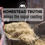 Homestead Truths Minus the Sugarcoating