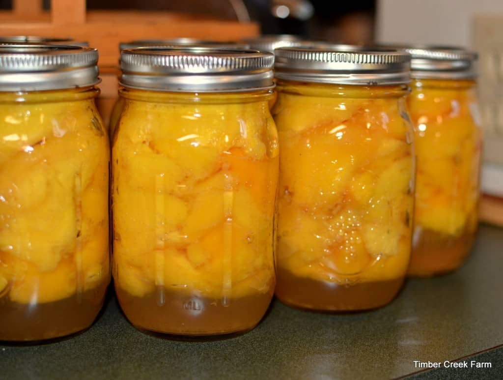 peaches preserved baked and delicious