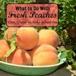 Cooking Peaches, Preserved, Baked and Delicious