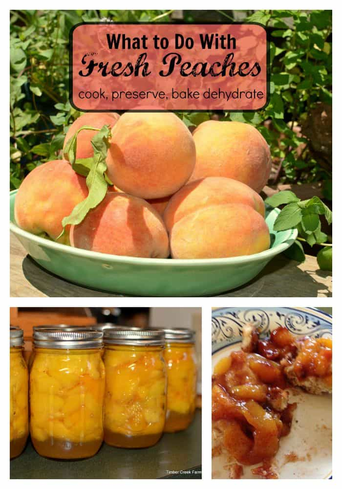 Peaches, Preserved, Baked, Delicious