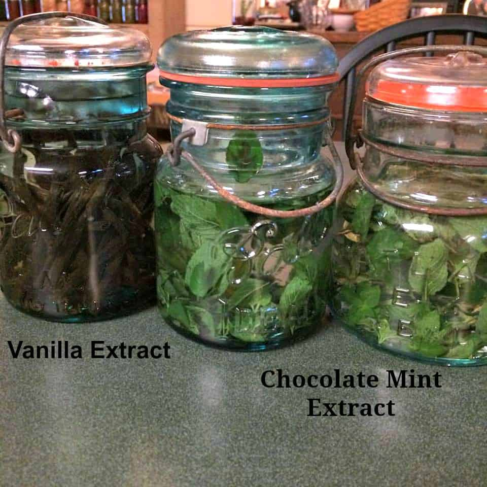 How to Make Chocolate Mint Extract