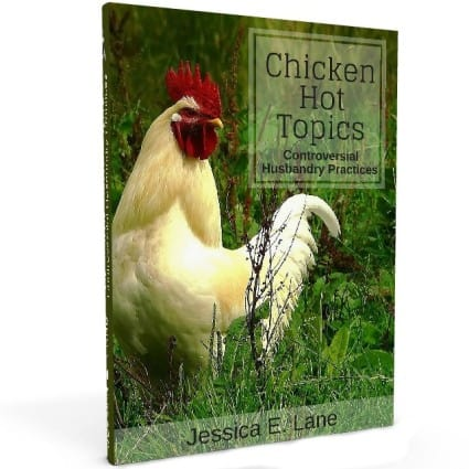 chicken-hot-topics1