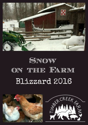 snow on the farm