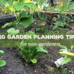 10 Garden Planning Tips Non-Gardeners Need