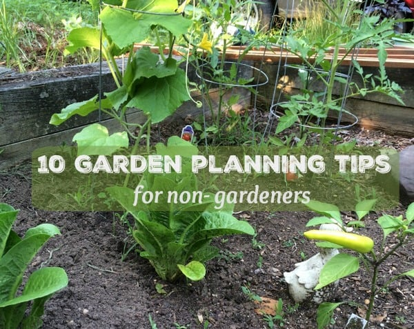 10 Garden Planning Tips Non-Gardeners Need