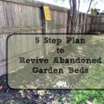 5 Step Plan to Bring Life to Abandoned Garden Beds