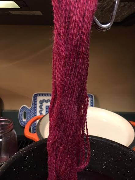 pokeberry dye