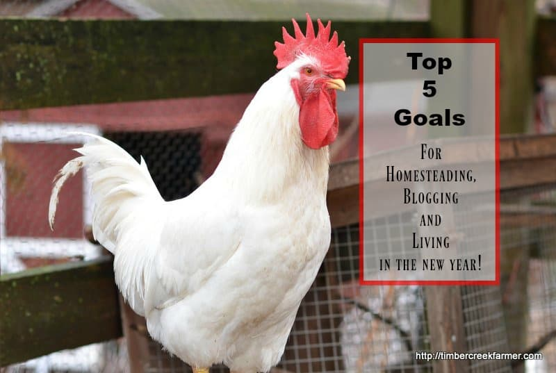 My Top 5 Goals for Homesteading, Blogging, Living in 2017
