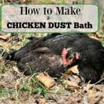 Make a Chicken Dust Bath for the Run
