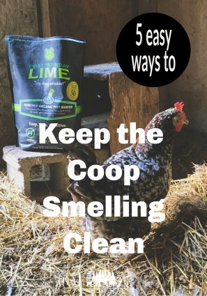 keep chicken coop smelling fresh