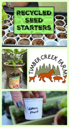 recycled seed starters