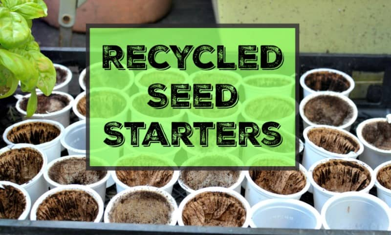 Recycled Seed Starters From the Trash Bin