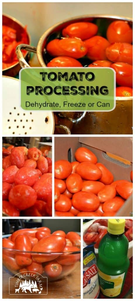 Tomato processing is arguably one of the more common tasks that we do to prepare for storage. You can't beat the taste and texture of a fresh tomato.